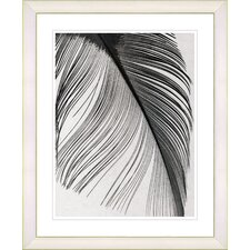 """Feather"" by Zhee Singer Framed Fine Art Giclee Print"