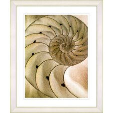 """Sea Cambrian - Sepia"" by Zhee Singer Framed Fine Art Giclee Print"