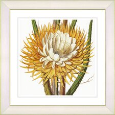 Vintage Botanical No. 15W by Zhee Singer Framed Giclee Print Fine Wall Art
