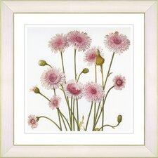 Vintage Botanical No. 39W by Zhee Singer Framed Giclee Print Fine Wall Art