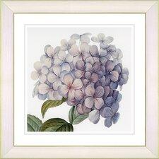 Vintage Botanical No. 18W by Zhee Singer Framed Giclee Print Fine Wall Art