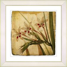 Vintage Botanical No. 43A by Zhee Singer Framed Giclee Print Fine Wall Art