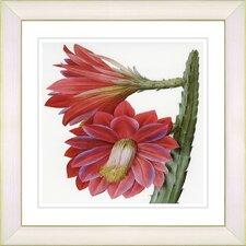 Vintage Botanical No. 25W by Zhee Singer Framed Giclee Print Fine Wall Art