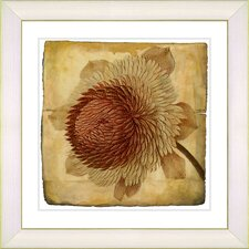 Vintage Botanical No. 20cA by Zhee Singer Framed Giclee Print Fine Wall Art