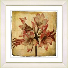 Vintage Botanical No. 33A  by Zhee Singer Framed Giclee Print Fine Wall Art