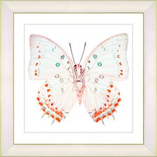 """""""White Butterfly"""" by Zhee Singer Framed Graphic Art"""
