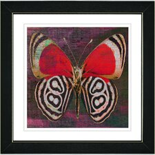 """Zebra Butterfly"" by Zhee Singer Framed Graphic Art"