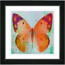 """Butterfly"" by Zhee Singer Framed Graphic Art"