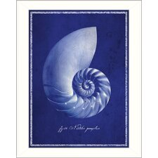 Nautilus Shell Framed Graphic Art