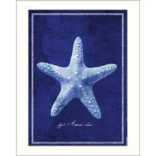 Starfish Framed Graphic Art