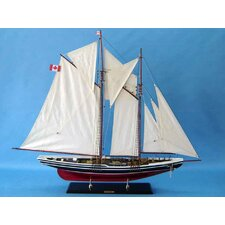 Bluenose Limited Sailboat
