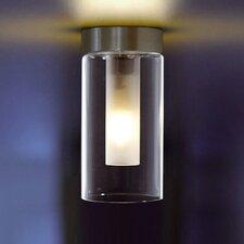 Double 1 Light Flush Light