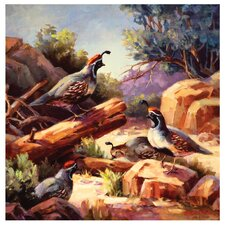 Desert Mountain Quail Occasions Coasters Set (Set of 4)