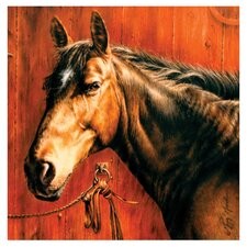 Horse Portrait Occasions Coasters Set (Set of 4)