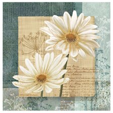 Daisy Field I Occasions Coasters Set (Set of 4)
