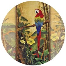 Exotic Birds II Coaster (Set of 4)