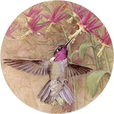 <strong>Thirstystone</strong> Winged Jewel Coaster (Set of 4)