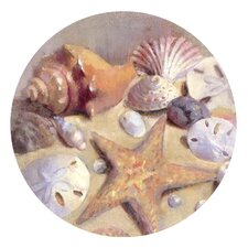 <strong>Thirstystone</strong> Sea Shells Occasions Coaster (Set of 4)