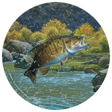 Bass Occasions Coaster (Set of 4)