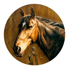 <strong>Thirstystone</strong> Horse Portrait Coaster (Set of 4)