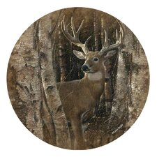 Birchwood Buck Occasions Coaster (Set of 4)