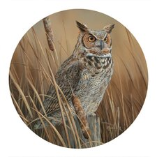 Owl Coaster (Set of 4)
