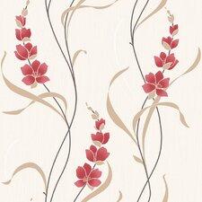 Angelica Wallpaper