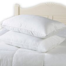 Egyptian Cotton Pillow Pair Non Allergenic 100% Cotton Cover (Set of 2)