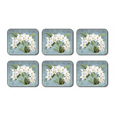 Orchid Splendor Coaster (Set of 6)