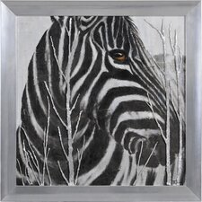 Burchell's Zebra by Elias Muñoz Framed Painting Print