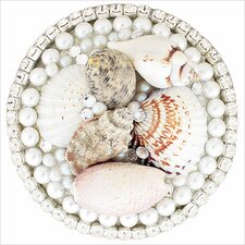 "Seashell 1.5"" Pop-Up Bathroom Sink Drain"
