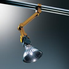 V/A Calo Swing Spot Light