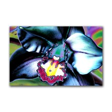 """The Apparition"" Gallery Wrapped Canvas Artwork"