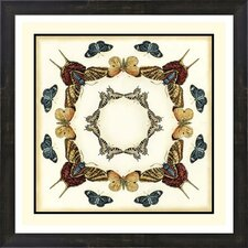 Butterfly Collector I by Chariklia Zarris Framed Graphic Art