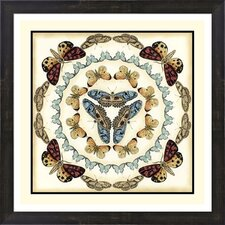 Butterfly Collector IV by Chariklia Zarris Framed Graphic Art