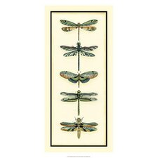 Dragonfly Collector II by Chariklia Zarris Painting Print