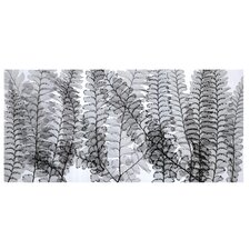 Maidenhair Ferns by Steven N. Meyers Photographic Print