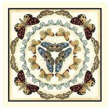 Butterfly Collector IV by Chariklia Zarris Graphic Art
