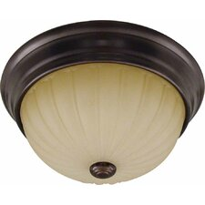 Troy 2 Light Semi Flush Mount