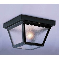 1 Light Outdoor Ceiling Mount