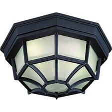 2 Light Outdoor Ceiling Mount