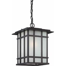 1 Light Outdoor Pendant