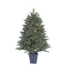 4.5' Natural Cut Lenox Pine Christmas Tree with 200 Clear Lights with Pot and Stand