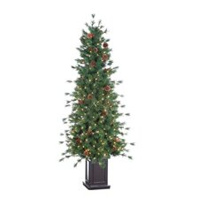 6' Green Hard Needle Georgia Pine Christmas Tree with 300 Clear Lights with Pot and Stand