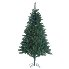 7' Green Fairmont Pine Christmas Tree with 350 LED 5 Multi Lights with Stand