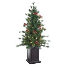 4.5' Green Hard Needle Georgia Pine Christmas Tree with 150 Clear Lights with Pot and Stand