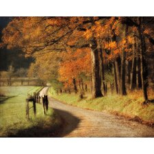Autumn's Morning Light Canvas Art