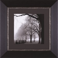 Black And White Morning Framed Artwork
