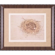 <strong>Art Effects</strong> Nesting I Framed Artwork