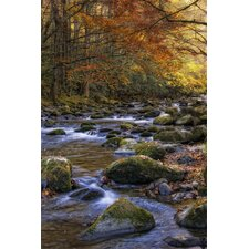 Autumn on Little River by Danny Head Photographic Print on Canvas